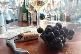 Finger Lakes_HW winery