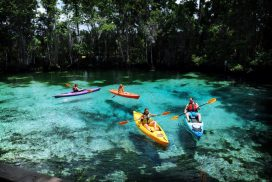 Three Sisters Springs Kayaking Family